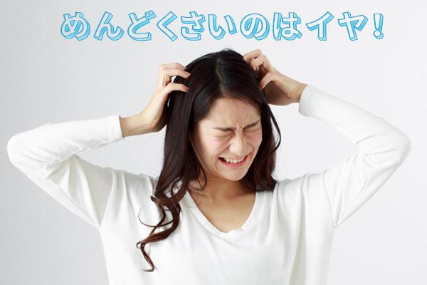 (画像挿入ーめんどくさいのはイヤ!)