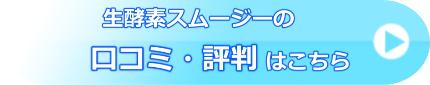 生酵素スムージーの口コミ・評判
