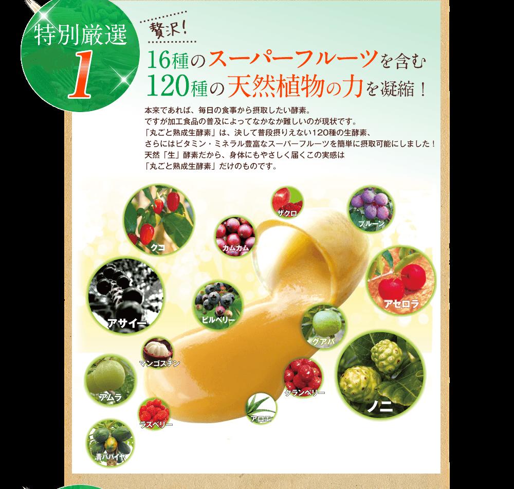 丸ごと熟成生酵素スーパーフルーツ